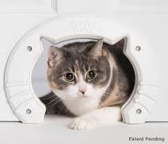 amazon com built in cat door for medium u0026 large cats fits