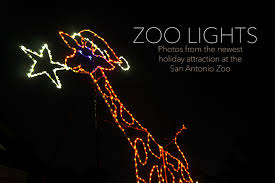 Zoo Lights Coupons by San Antonio Zoo Lights A New Holiday Tradition Family Love In