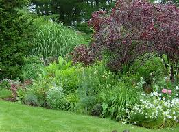 layering to create a lush landscape landscaping with tesselaar
