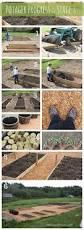 171 best vegetable garden design images on pinterest gardening