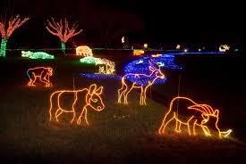zoo lights portland oregon oregon zoo celebrates holiday season with zoolights event