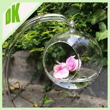 terrarium containers wholesale finest apothecary jar with