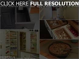 Inside Kitchen Cabinets Ideas Bugs In Kitchen Cabinets Bar Cabinet Kitchen Cabinet Ideas