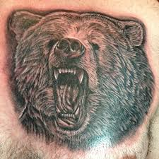 bear tattoos and designs page 159