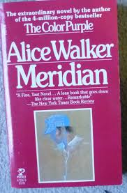 the color of water book meridian alice walker amazon com books