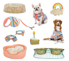 oh joy target dog bowls beds toys and apparel from oh joy for target dog milk