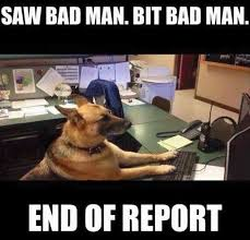 Funny Police Memes - another concise police report from a dedicated officer with the call