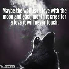 Lone Wolf Meme - wolf quotes for the day have a good day guys it s getting late