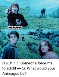 Hermione Memes - harry hermione runl it s the grim potterscenes 190117 someone force