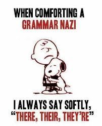 Funny Grammar Memes - i would do this but i am the grammar nazi blogs and blurbs