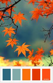 shades of orange burnt orange and teal autumn color palette