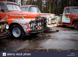 Classic Ford Truck Bumpers - four vintage classic ford trucks parked all are in a poor