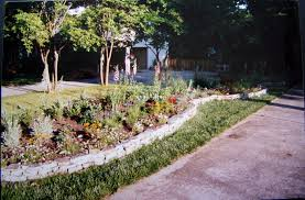 designing and creating a sun loving perennial flower bed