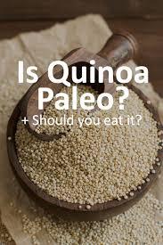 is quinoa allowed on the paleo diet paleo grubs