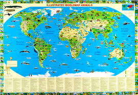 United States Wall Map Laminated by