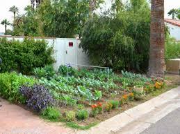 interesting front yard vegetable garden design small backyard