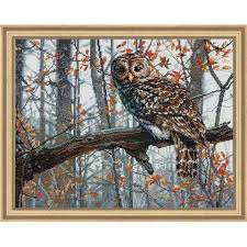 dimensions wise owl counted cross stitch