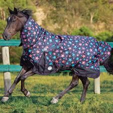 Weatherbeeta Combo Stable Rug Weatherbeeta Pony Rugs Roselawnlutheran