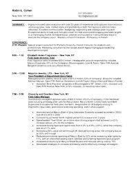 sle sales associate resume retail sales associate resume exles resume template