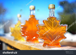Backyard Maple Syrup by Different Colour Variatons Maple Syrup Made Stock Photo 187682741