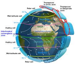 geographical pattern ne demek trade winds wikipedia