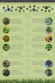 fast growing native plants 7 best native trees images on pinterest native plants new