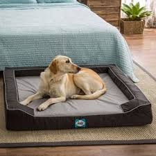 costco pet beds pet beds for less overstock com