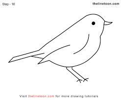 easy bird drawing pencil art drawing
