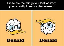 True Life Meme - best of 25 true life meme wallpaper site wallpaper site