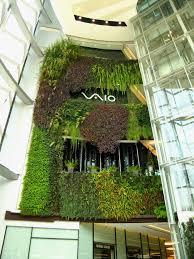 Best Plants For Vertical Garden - 266 best plants vertical gardening images on pinterest