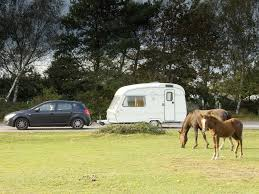New Hampshire travel pony images Caravan holidays in the new forest travel guide practical caravan jpg