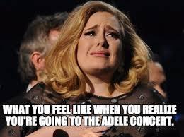 Adele Memes - meme creator adele meme generator at memecreator org