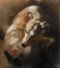 curled up by julie brunn whippet dogs art