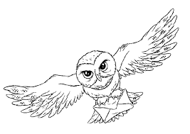 owl animal coloring pages bird that flies open wings harry