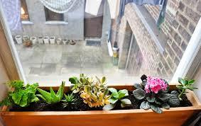 indoor window box ideas interior design ideas