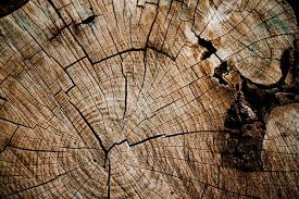 100 amazing wood textures psddude
