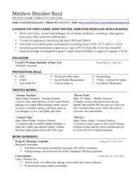 Resume For Movie Theater Job by Stunning Freelance Work On Resume Gallery Simple Resume Office