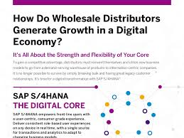 how do wholesale distributors generate growth in a digital economy