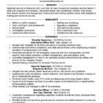 Pharmaceutical Sales Resume Example by Police Resume Example Law Enforcement Professional Jobs