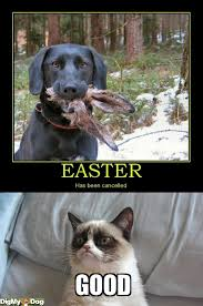 Good Grumpy Cat Meme - grumpy cat good riddance haha pinterest grumpy cat