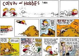 the amazing calvin hobbes really