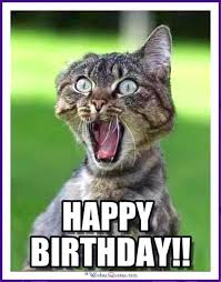 Birthday Meme Cat - best 26 cat birthday meme 10 so peachy