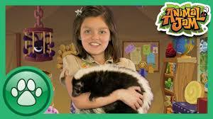 wild explorers meet a skunk youtube