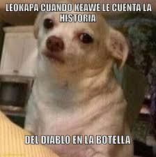 Memes Del Diablo - leokapa cuando keawe le cuenta la memes en quebolu