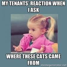 Property Management Memes - november 2014 paramount property management