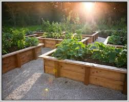151 best vegetable garden design images on pinterest veggie