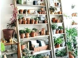 indoor plant display diy indoor plant shelves indoor plant shelf indoor plant display