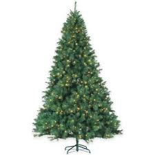 4ft christmas tree buy christmas trees from bed bath beyond