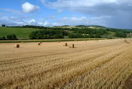 chambre d agriculture dordogne prix des terres agricoles dordogne