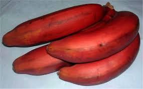 cuisiner des bananes tarte aux bananes rouges